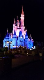 rfs magic kingdom